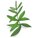 Blancreme - Trousse de voyage Thé vert & verveine 2