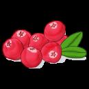 Blancrème - Huile démaquillante Grenade & cranberry 2